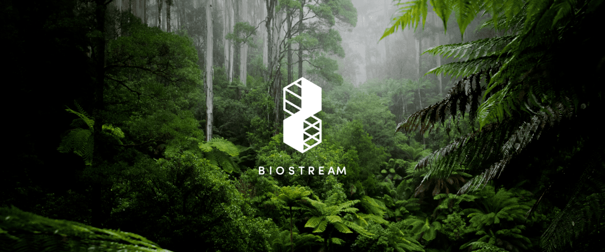 Introducing BIOSTREAM Bringing rainforest nature data to life