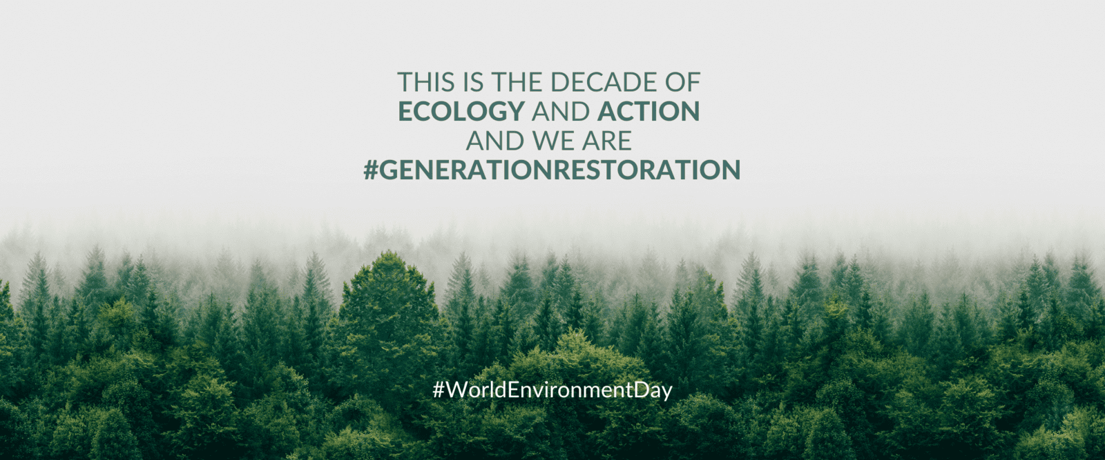 This is the decade of Ecology and Action and we are #GenerationRestoration